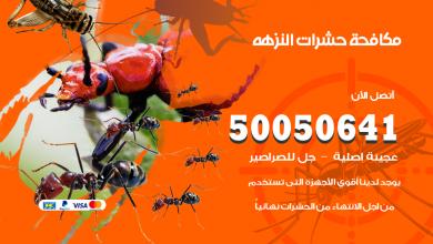 مكافحة حشرات النزهه