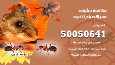 مكافحة حشرات مدينة صباح الاحمد